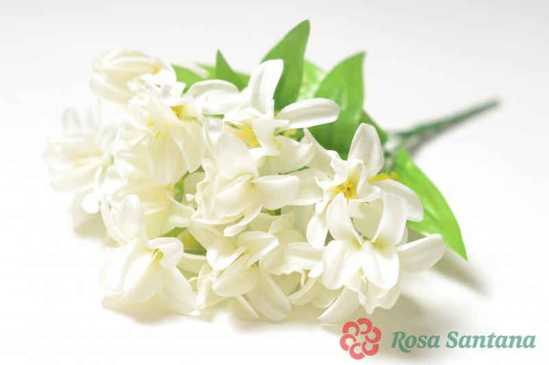 Цветы ростова где купить орхидею, английские розы с доставкой алматы